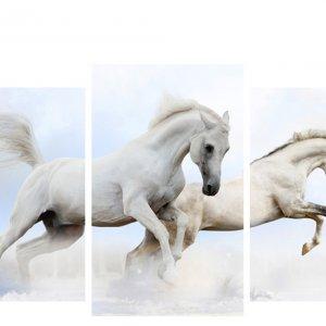 Модульная картина Декор Карпаты 100х53 см Белые лошади (M3-t25)