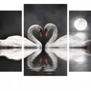 Модульная картина Декор Карпаты 100х53 см Лебеди под луной (M3-t30)