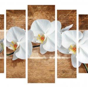 Модульная картина Декор Карпаты 120х80 см Белые Орхидеи (M5-453-1)