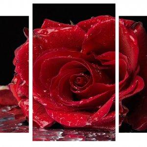 Модульная картина Декор Карпаты 100х53 см Роза (M3-t174)