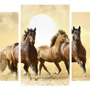 Модульная картина Декор Карпаты 100х53 см Лошади (M3-t11)