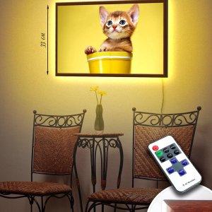 """LED – картина """"Котенок"""""""