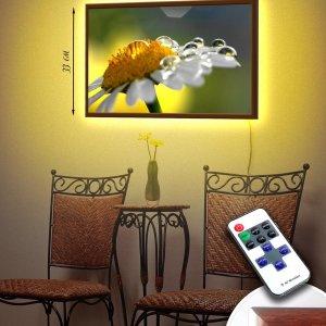 """LED – картина """"Ромашка в росе"""""""